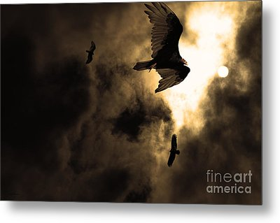 The Vultures Have Gathered In My Dreams . Version 2 . Golden Metal Print by Wingsdomain Art and Photography