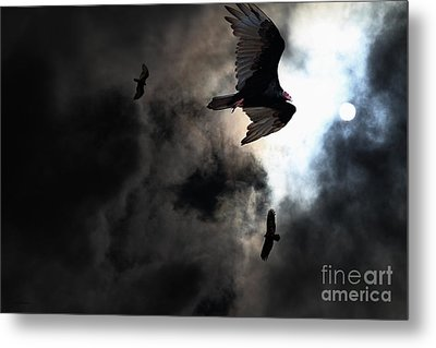 The Vultures Have Gathered In My Dreams . Version 2 Metal Print by Wingsdomain Art and Photography
