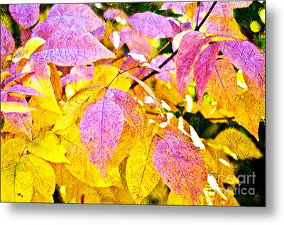 The Warm Glow In Autumn Abstract Metal Print by Andee Design