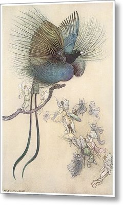 The Water Babies The Most Beuatiful Bird Of Paradise Metal Print by Warwick Goble