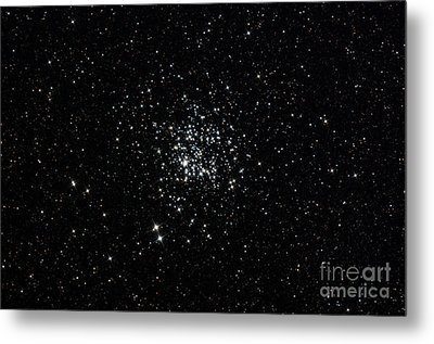 The Wild Duck Cluster Metal Print by Rolf Geissinger