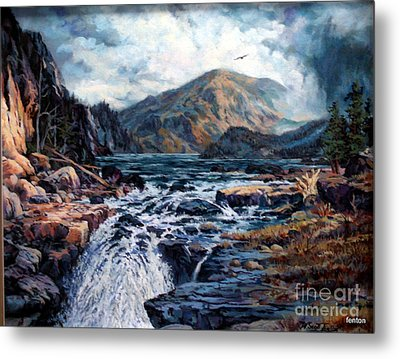 The Wilds Of Lake Superior Metal Print by W  Scott Fenton