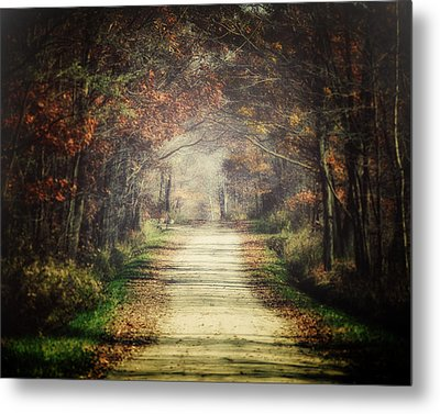 The Winding Road Metal Print by Lisa Russo