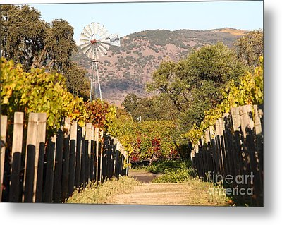 The Windmill At The Old Vineyard Metal Print by Wingsdomain Art and Photography