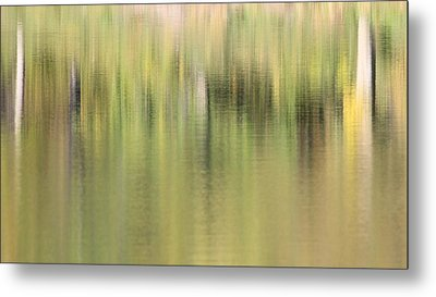 Metal Print featuring the photograph The Woods by Penny Meyers