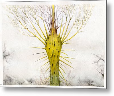 The Yellow Plant Metal Print by Bjorn Eek