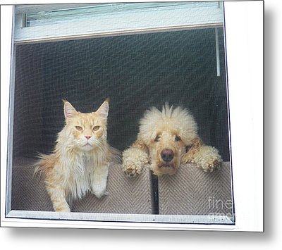 They Wait For Me... Metal Print by Judy Via-Wolff