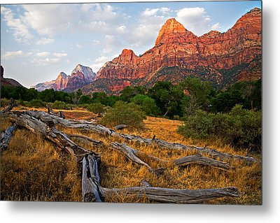 This Is Zion Metal Print by Peter Tellone