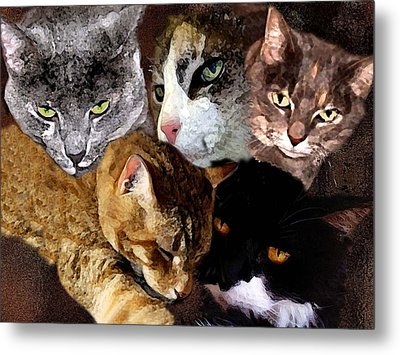Those Cats Metal Print by Darlene Freas