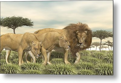 Metal Print featuring the digital art Three African Lions by Walter Colvin