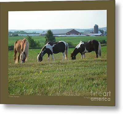 Three Horses Metal Print by Patricia Overmoyer
