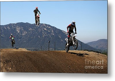 Three In The Air Metal Print by Vivian Christopher