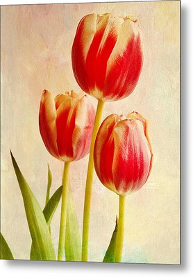 Metal Print featuring the photograph Three Tulips by James Bethanis