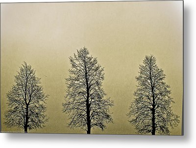 Threes Metal Print by Michael Nowotny