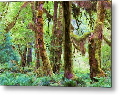 Through Moss Covered Trees Metal Print by Heidi Smith