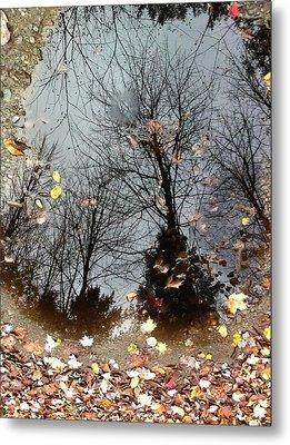 Through The Looking Glass Metal Print by Elijah Brook