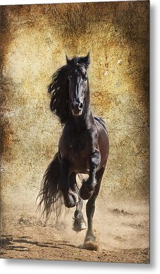 Thundering Stallion D6574 Metal Print by Wes and Dotty Weber