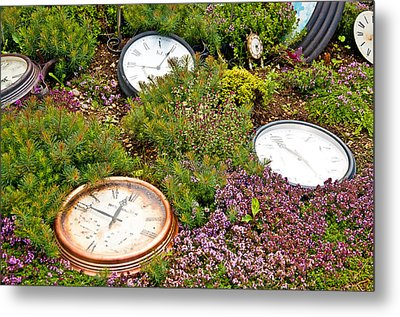 Thyme And Time Metal Print by Chris Thaxter