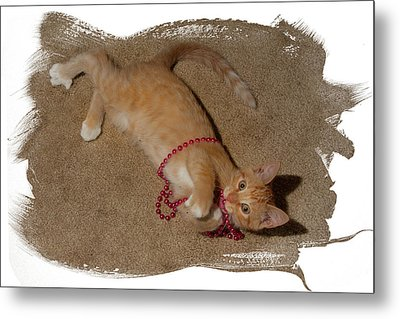 Tiger And Beads Metal Print