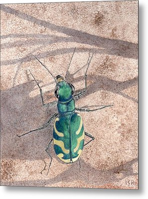 Tiger Beetle Metal Print by Inger Hutton