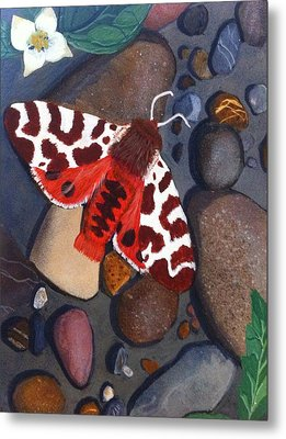 Tiger Moth On River Rocks Metal Print by Amy Reisland-Speer