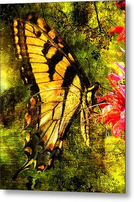 Tiger Swallowtail Butterfly Happily Feeds Metal Print by J Larry Walker