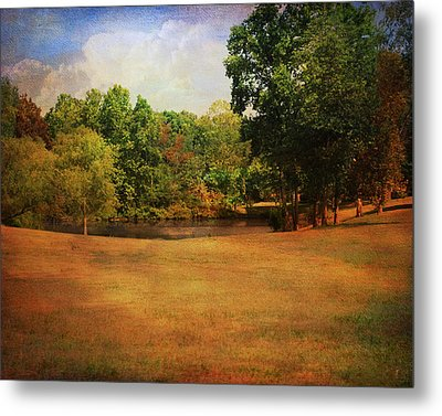 Timbers Pond Metal Print by Jai Johnson