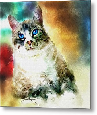 Toby The Cat Metal Print by Robert Smith