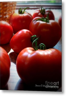 Metal Print featuring the painting Tomato Love by Susan Fisher