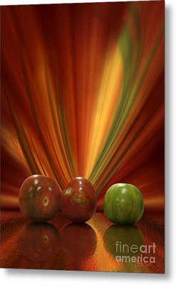 Tomatoes Metal Print by Johnny Hildingsson