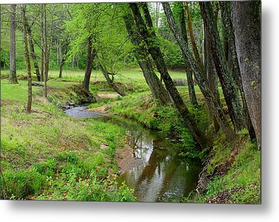 Metal Print featuring the photograph Toms Creek In Early Spring by Kathryn Meyer