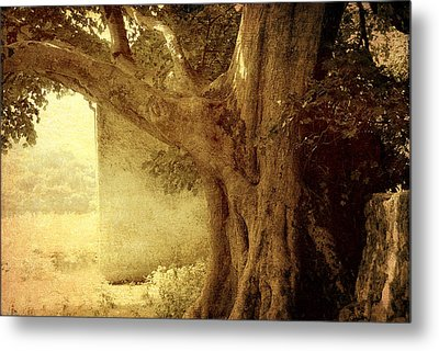 Touch Of History. Wicklow. Ireland Metal Print by Jenny Rainbow