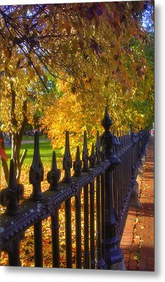 Touched By Autumn Metal Print