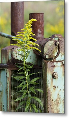 Metal Print featuring the photograph Tractor by Carrie Cranwill