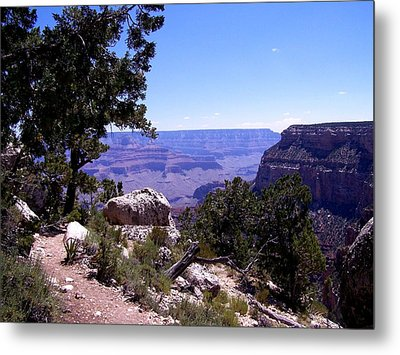Trail To The Canyon Metal Print by Dany Lison