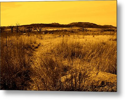 Trail To The Valley II Metal Print by Mickey Harkins