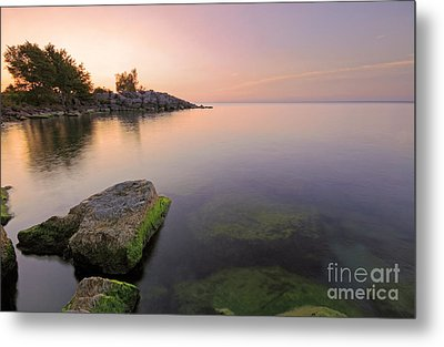 Tranquil Morning Metal Print by Charline Xia