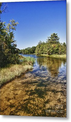 Tranquil Stream In Northern Michigan Metal Print by Christopher Purcell