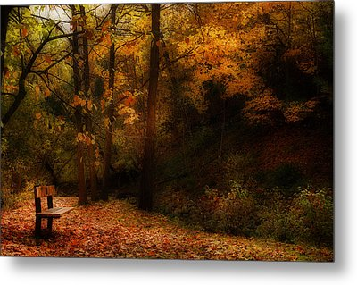 Tranquility Metal Print by Anthony Rego