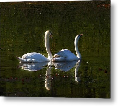 Tranquility Metal Print by Barbara  White