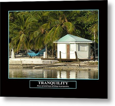 Tranquility Metal Print by Kevin Brant