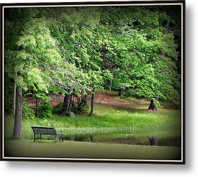 Tranquility Metal Print by Priscilla Richardson