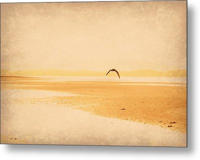Metal Print featuring the photograph Tranquillity by Marilyn Wilson