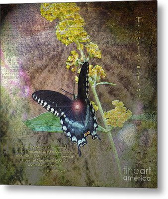 Transformation Metal Print by Patricia Griffin Brett