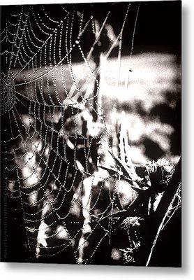 Trap - Falle Metal Print by Mimulux patricia no No