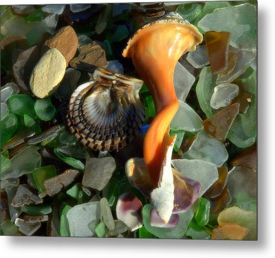 Treasures From The Sand Metal Print by Bruce Carpenter