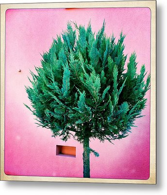Tree And Colorful Pink Wall Metal Print by Matthias Hauser