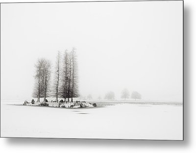 Tree In Snow Metal Print by Yagosan
