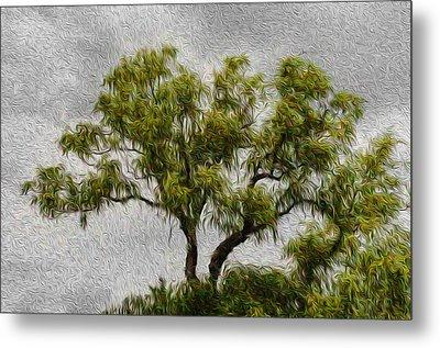 Tree In The Wind Metal Print