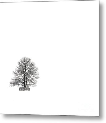 Tree Isolated Under The Snow In The Middle Field In Winter. Metal Print by Bernard Jaubert